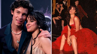 Shawn Mendes had the best response to a fan who called Camila Cabello 'breathtaking'