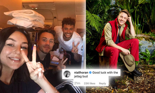 Niall Horan reached out to Roman Kemp