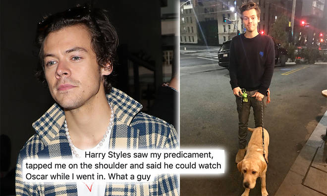 Harry Styles looked after a fan's puppy