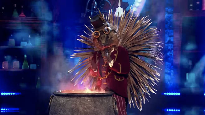 Who is Hedgehog on The Masked Singer?