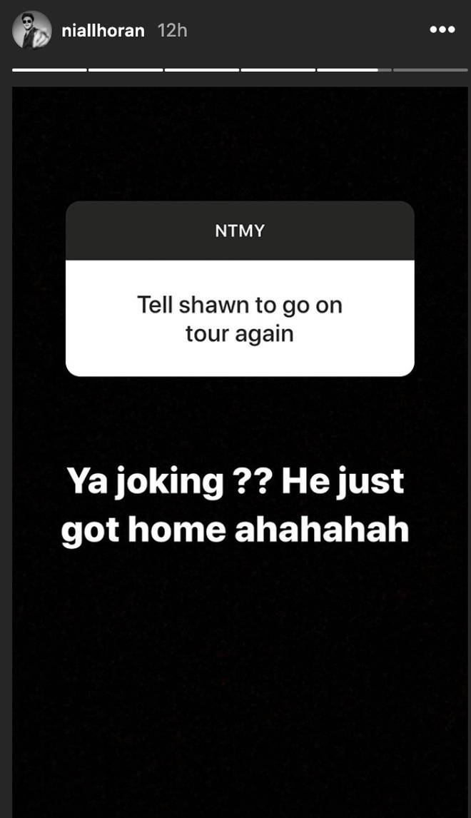 Niall Horan sticks up for pal Shawn Mendes during Instagram Q&A