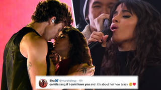 Camila Cabello just sang Shawn Mendes's song about her