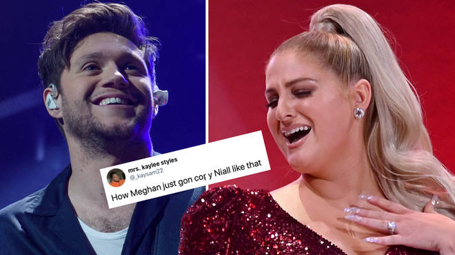 Niall Horan and Meghan Trainor's song is called 'Nice To Meet Ya'