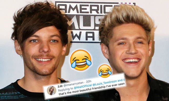 Louis Tomlinson rinses Niall Horan on Twitter