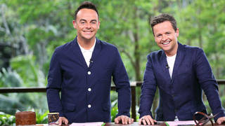 Ant McPartlin won't return for this year's I'm A Celeb