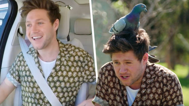 Niall Horan overcame his pigeon phobia with James Corden