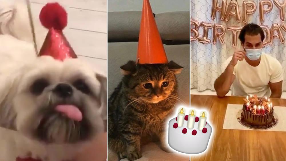 Strange 7 Hilarious Memes For People Spending Their Birthday In Quarantine Funny Birthday Cards Online Elaedamsfinfo