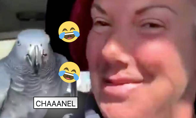 Chanel has become a viral icon.