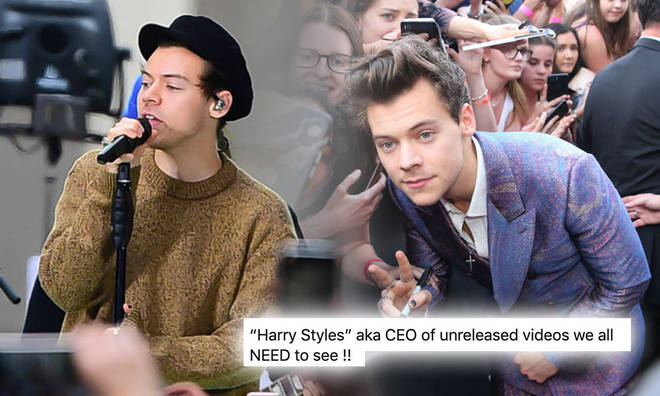 Harry Styles has a few music videos fans are yet to see