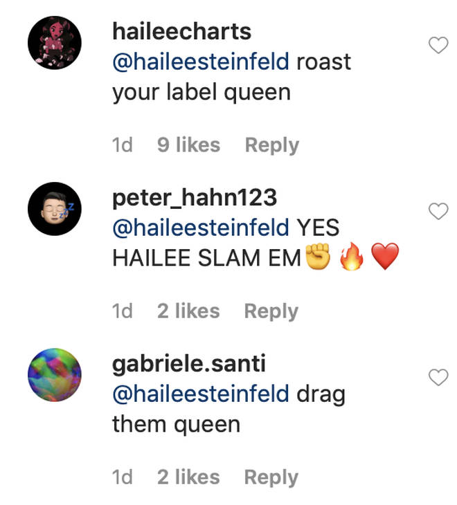 Hailee Steinfeld's fans supported the star for calling out her label