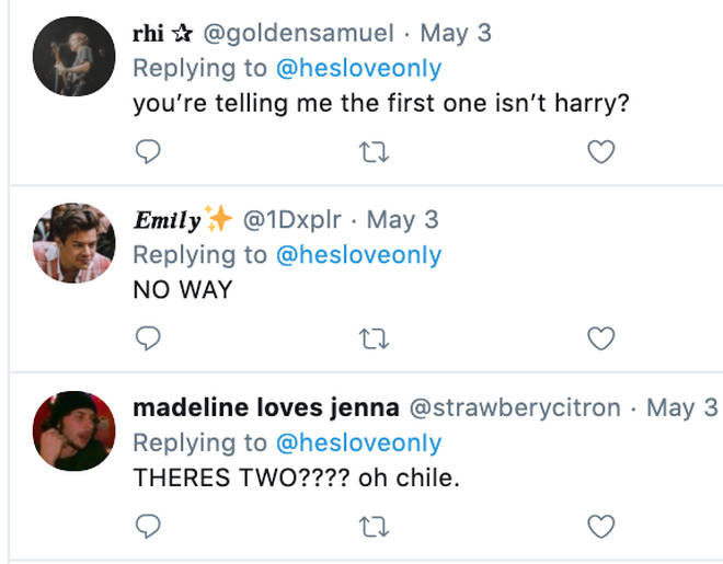 Fans in disbelief over Harry Styles lookalikes