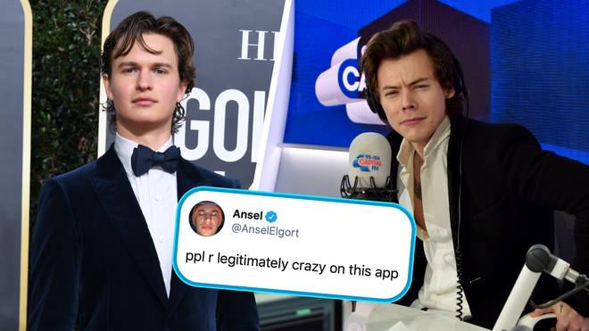 Ansel Elgort publicly dragged one Harry Styles fan on Twitter
