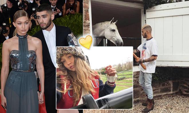 Zayn Malik has bought a farm nearby to Gigi Hadid's mum Yolanda