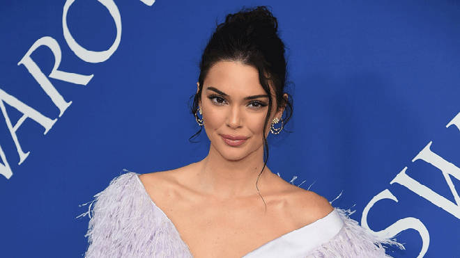 Kendall Jenner has made a very nice net worth for herself