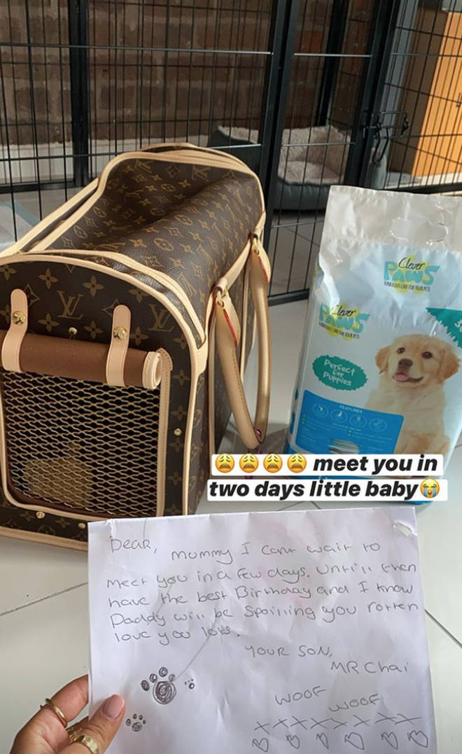 Molly-Mae and Tommy are getting a puppy