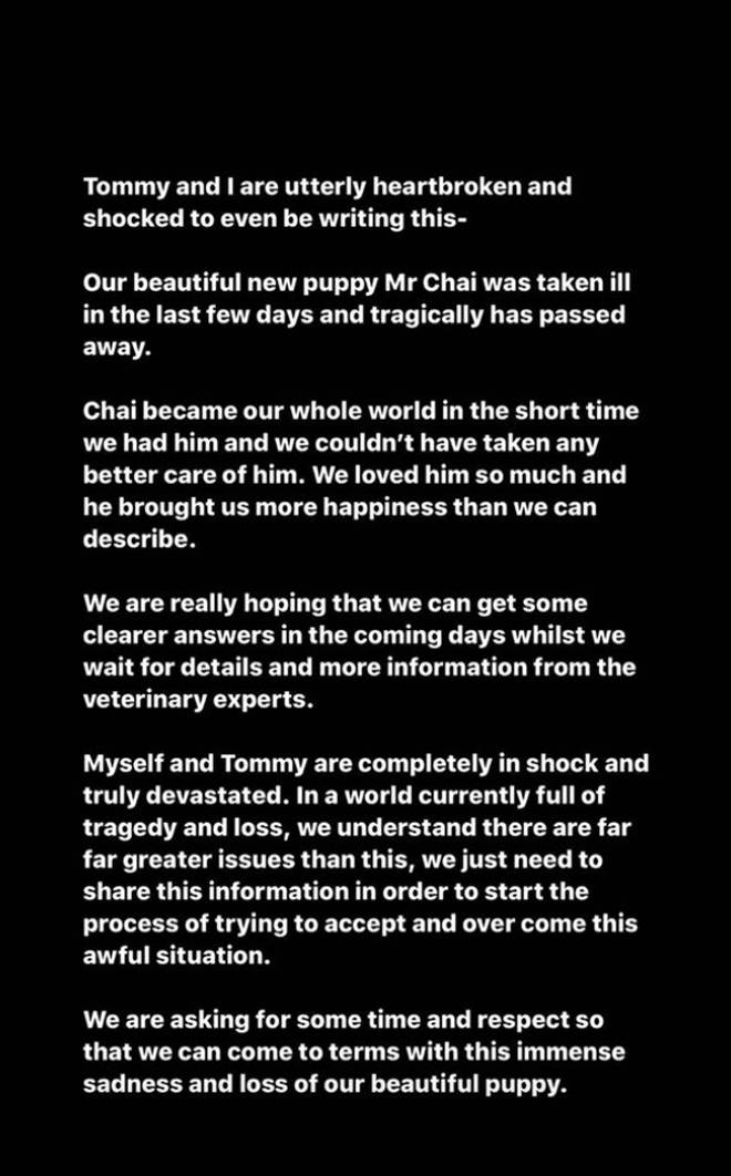Molly-Mae shared a heartbreaking statement to reveal her puppy has died