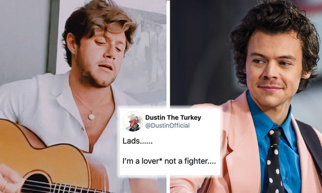 Dustin The Turkey responds after angering Niall Horan fans