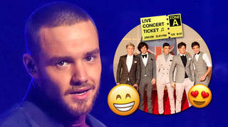Liam Payne Sparks One Direction Reunion Rumours
