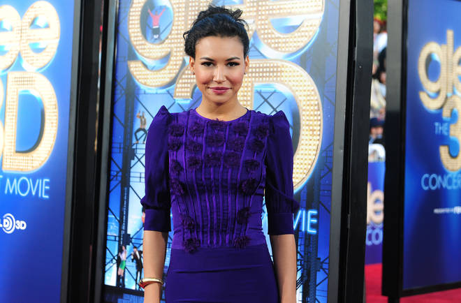 Naya Rivera is said to be missing after a swimming accident