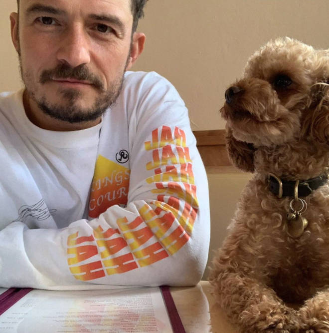 Orlando Bloom is devastated over the death of his beloved dog, Mighty.