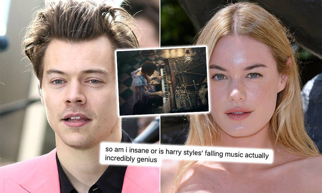 A Harry Styles fan has uncovered some major clues in 'Falling' that are seemingly about Camille Rowe