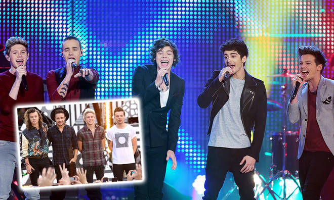 Harry Styles said that each of the boys had their own 'role' in One Direction