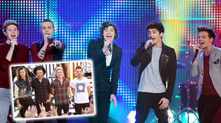 Harry Styles said that each of the boys had their own 'role' in One Direction.
