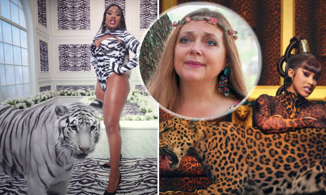 Carole Baskin slams use of big cats in 'WAP' video