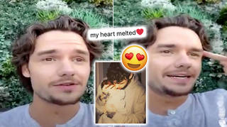 Liam Payne's fans were in awe of the cute story