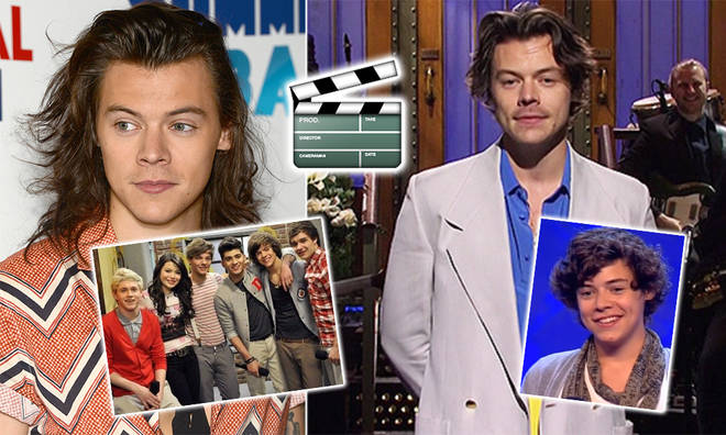 Harry Styles has starred in a number of TV roles