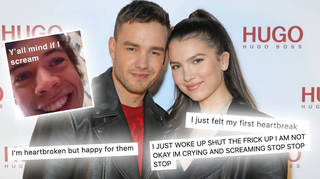 Liam Payne's engagement news sparked some hilarious reactions from fans