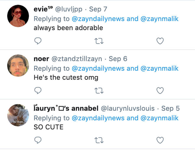 Zayn fans gush over his adorable childhood photos