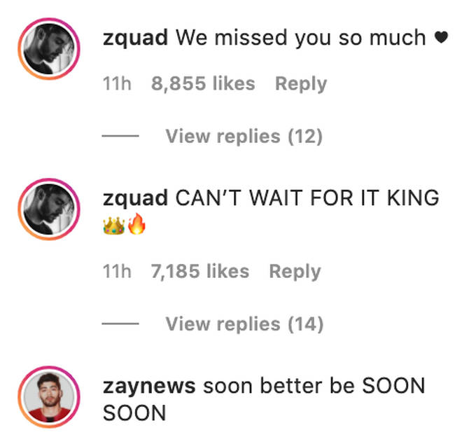 Zayn fans are over the moon with his latest announcement