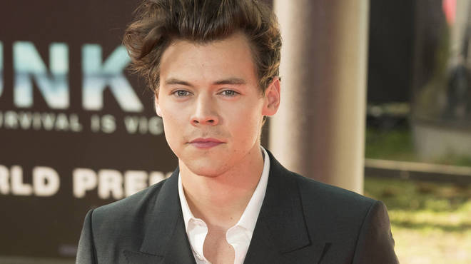 Harry Styles has landed some big film roles