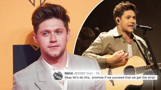 Niall Horan promised he'll strip if streams of his latest album triple in four months