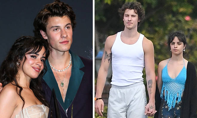 Camila Cabello and Shawn Mendes are still very much together in 2020