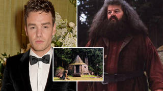 Liam Payne admitted he's a huge Harry Potter fan