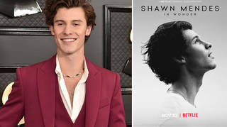 Shawn Mendes is releasing a Netflix documentary