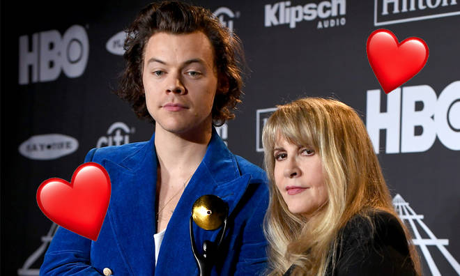 Harry Styles's BFF Stevie Nicks says he should get his own TV show