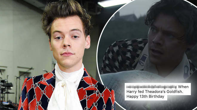 Harry Styles brought his 'Adore You' video to real life