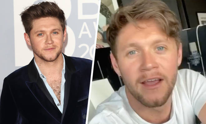 Niall Horan wishes he could vote in US election