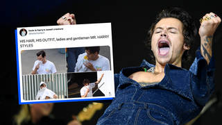 Harry Styles' fans got excited over his hair on the set of Don't Worry Darling