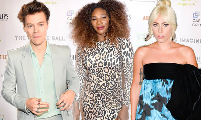 Harry Styles is chairing the 2019 Met Gala with Lady Gaga and Serena Williams