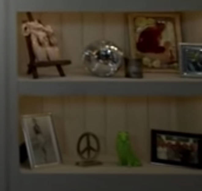 A green dog ornament and mirror ball on two of the shelves was a nod to Taylor's songs