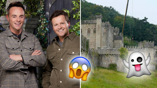 I'm A Celebrity 2020 will have some new Bushtucker Trials for its new castle location