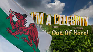 I'm A Celebrity is taking place in Wales this year