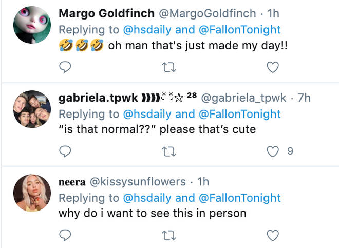 Fans react to Harry Styles's dog sitting saga