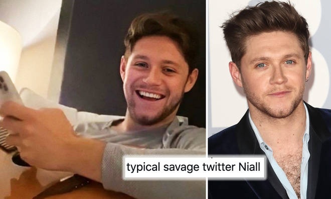 Niall Horan fans know he's a Twitter savage