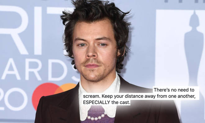 Harry Styles fans have been swarming the Don't Worry, Darling set