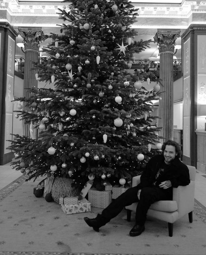 Liam Payne wished fans a Happy Christmas from beside a massive tree